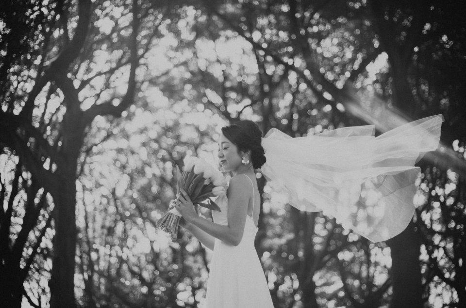 洋装ドレス前撮り撮影 – 根岸森林公園 –