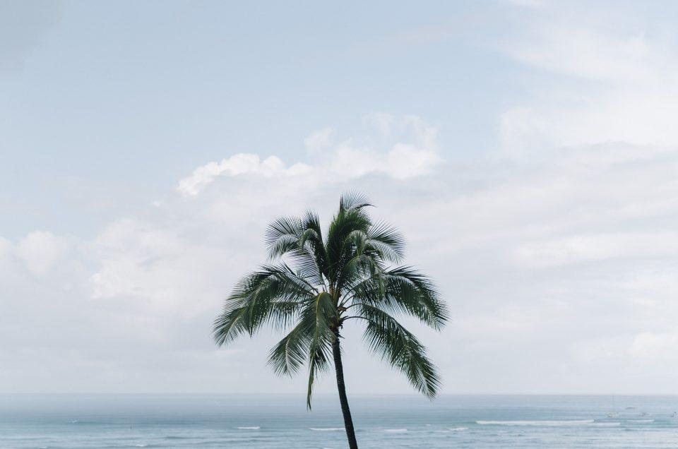 ハワイウェディングフォト / 結婚式当日撮影 – HAWAII・オアフ島①